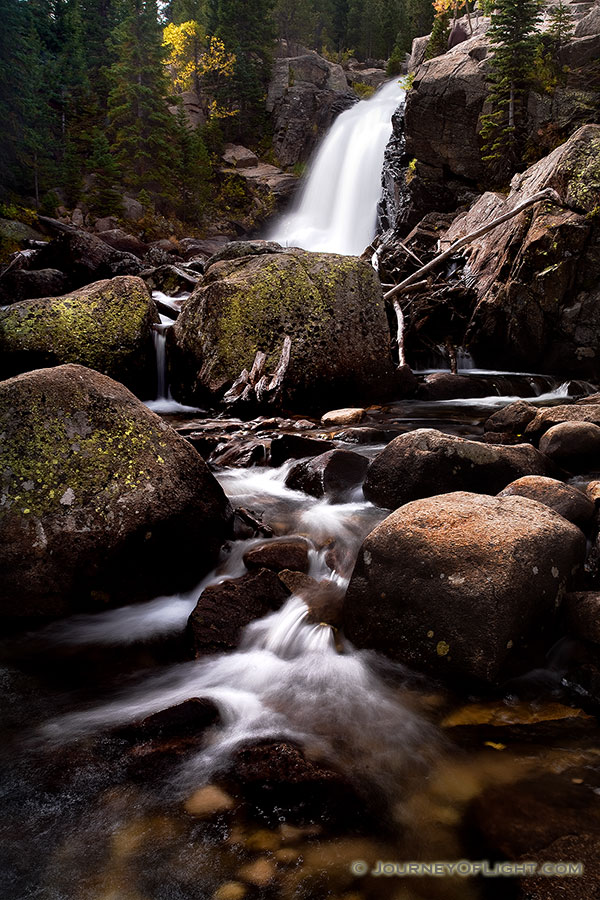 A popular hiking destination, Alberta falls at Rocky Mountain National Park roars downhill. - Rocky Mountain NP Photography