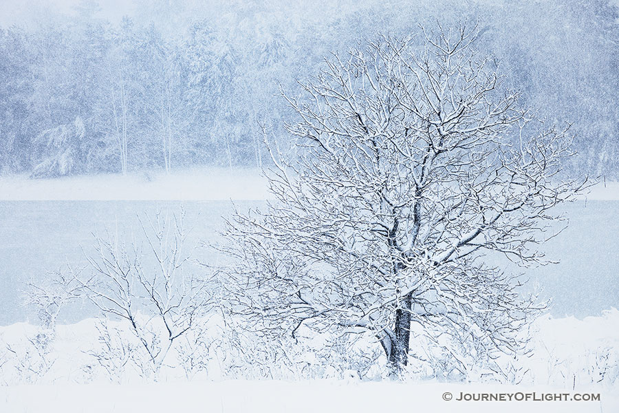 Snow falls on Wehrspann Lake at Chalco Hills Recreation Area on a cold February morning. - Nebraska Photography