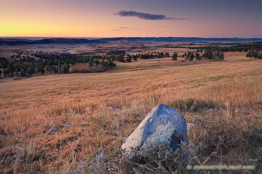 Trees and hills dominant the prairie landscape at Wind Cave National Park in South Dakota. - South Dakota Photography