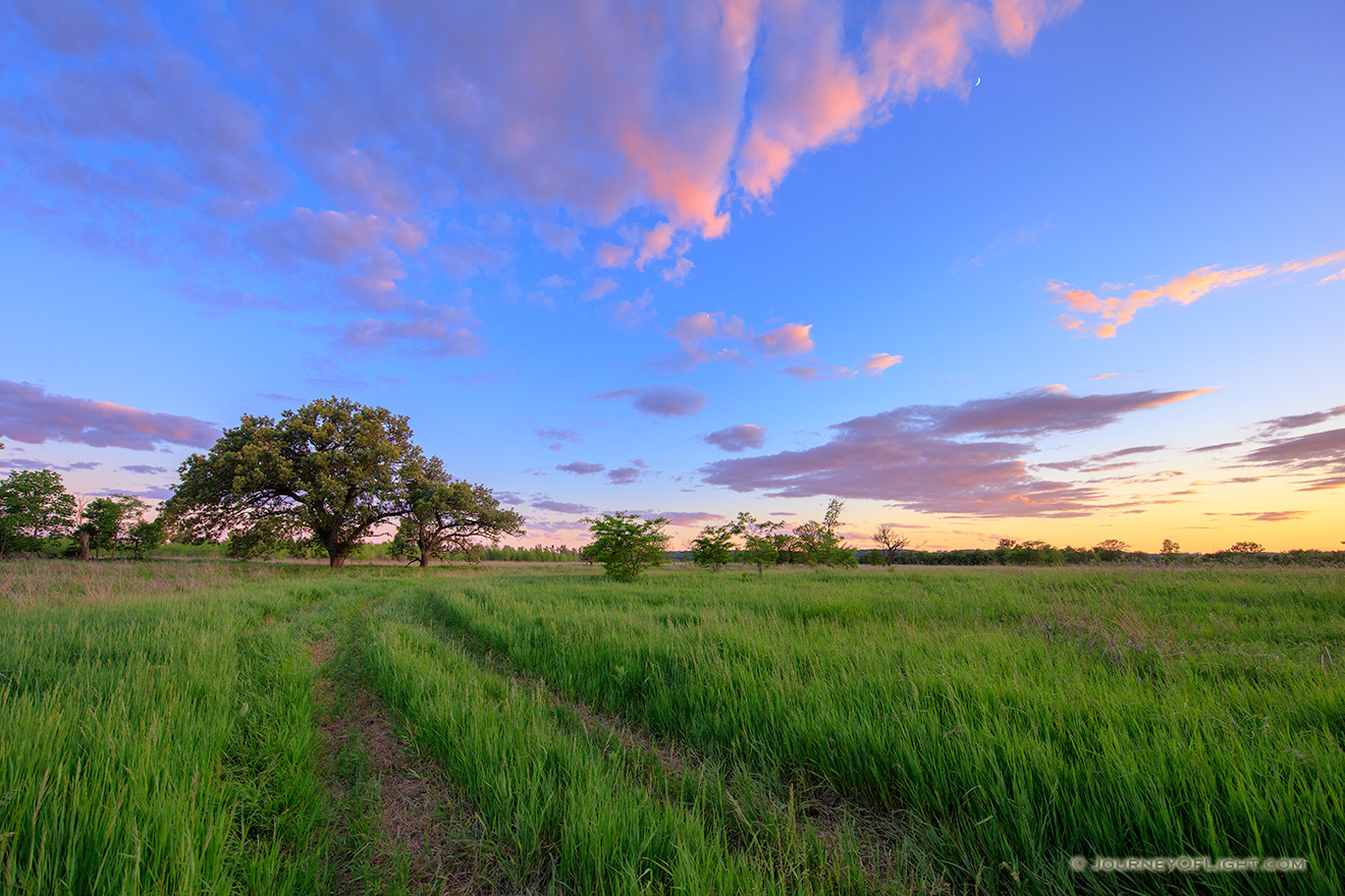 At the end of a country road on a priarie two Oak Trees stand greeting the twilight. - Platte River SP Picture